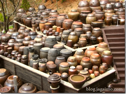 A massive collection of Korean ceramic fermentation vessels